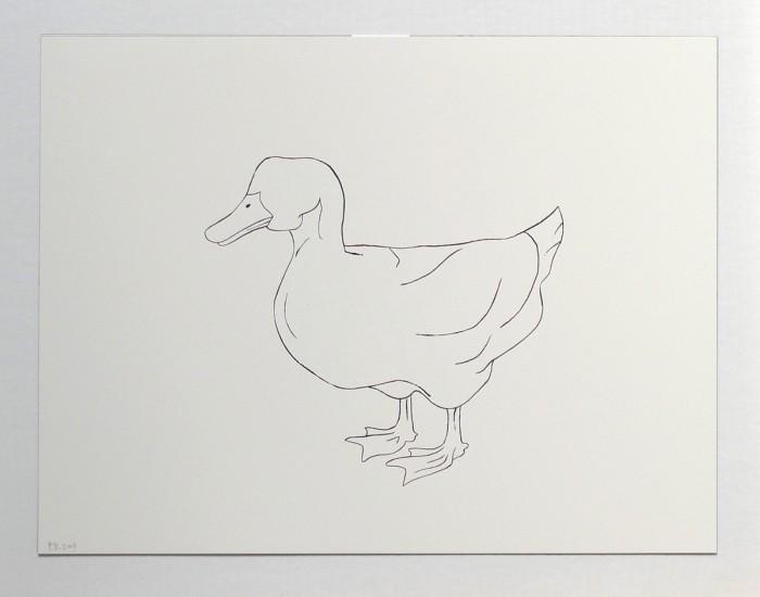 2009_duck_left