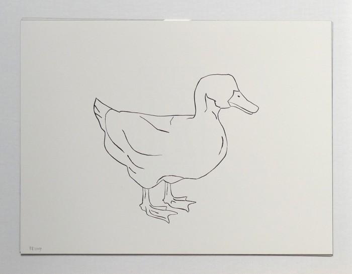 2009_duck_right