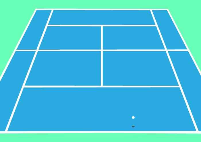 2010 tennis court